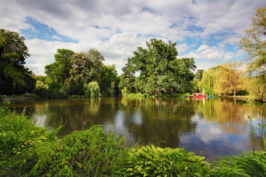 אגם קטן בפארק מקסימיר